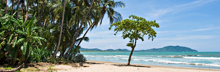 Playa Tamarindo Spanish Language Course Prices - © Antonio Nunes